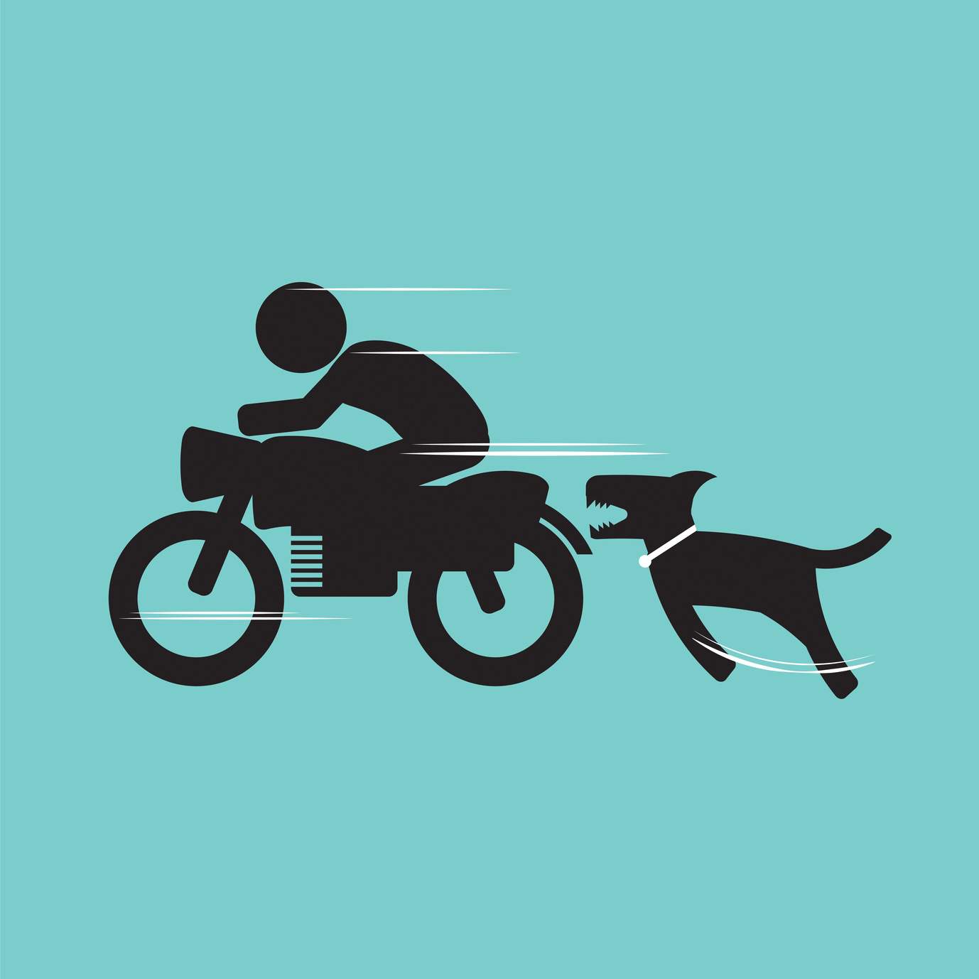 Dog biting a motorcycle rider and if you have been bit by a dog contact a skilled Burton dog bite attorney.