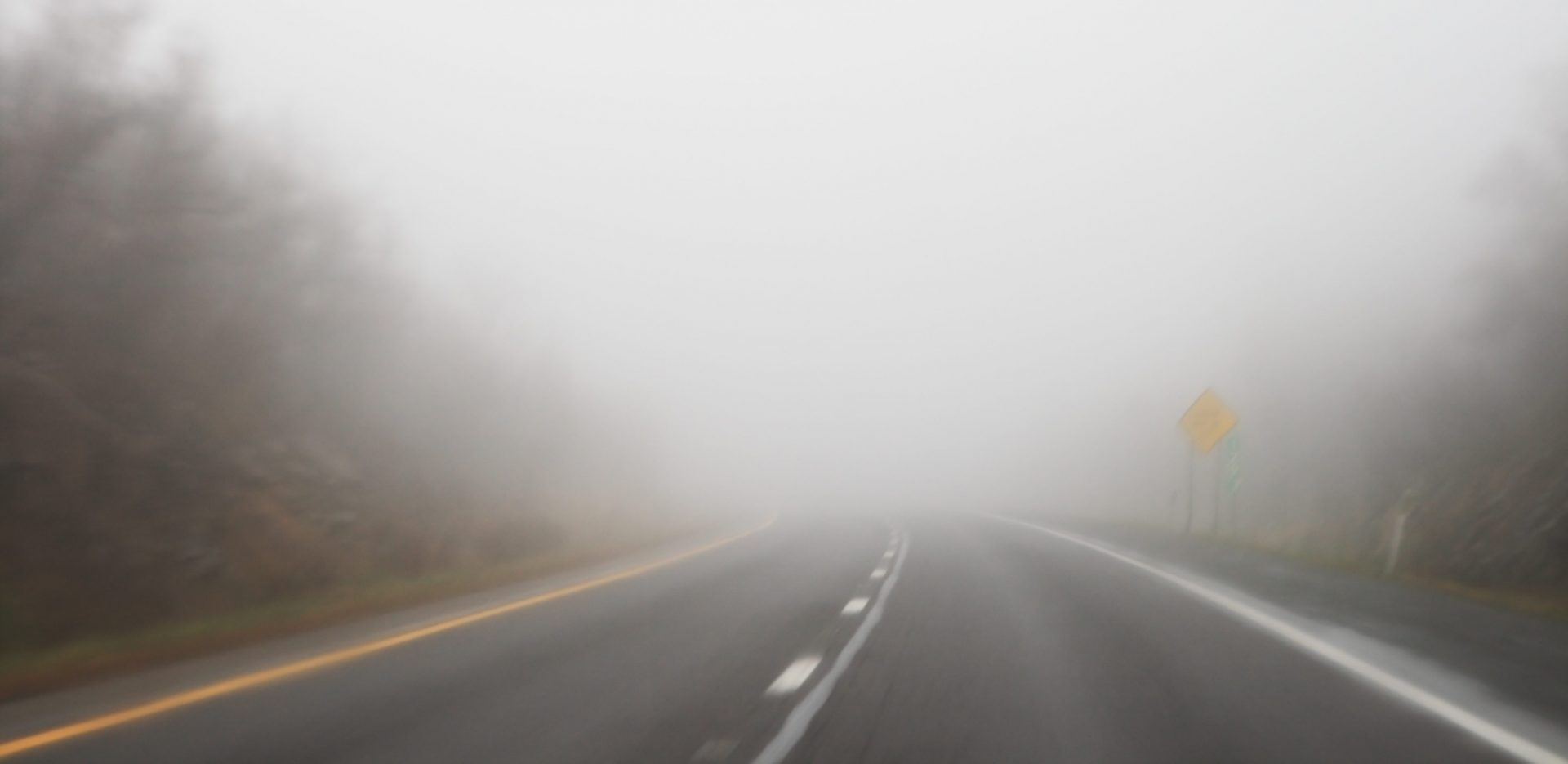 A misty road with foggy conditions, if in an accident due to poor weather conditions contact at skilled Michigan Accident Injury Attorneys.